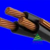 DuCX – 0,6/1 kV CÁP DUPLEX, RUỘT ĐỒNG, CÁCH ĐIỆN XLPE