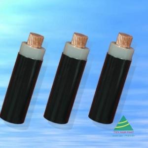 CXV − 0,6/1 kV CÁP ĐIỆN LỰC, RUỘT ĐỒNG, CÁCH ĐIỆN XLPE, VỎ PVC