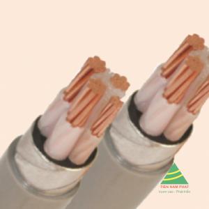 CÁP ĐIỆN KẾ DK - CXV - 0.6/1 kV