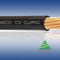 CÁP ĐIỆN LỰC, RUỘT ĐỒNG, CÁCH ĐIỆN PVC (CV - 450/750V & 0,6/1kV)