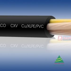 CÁP ĐIỆN LỰC, RUỘT ĐỒNG, CÁCH ĐIỆN XLPE, VỎ BỌC PVC (CXV - 0.6/1kV)